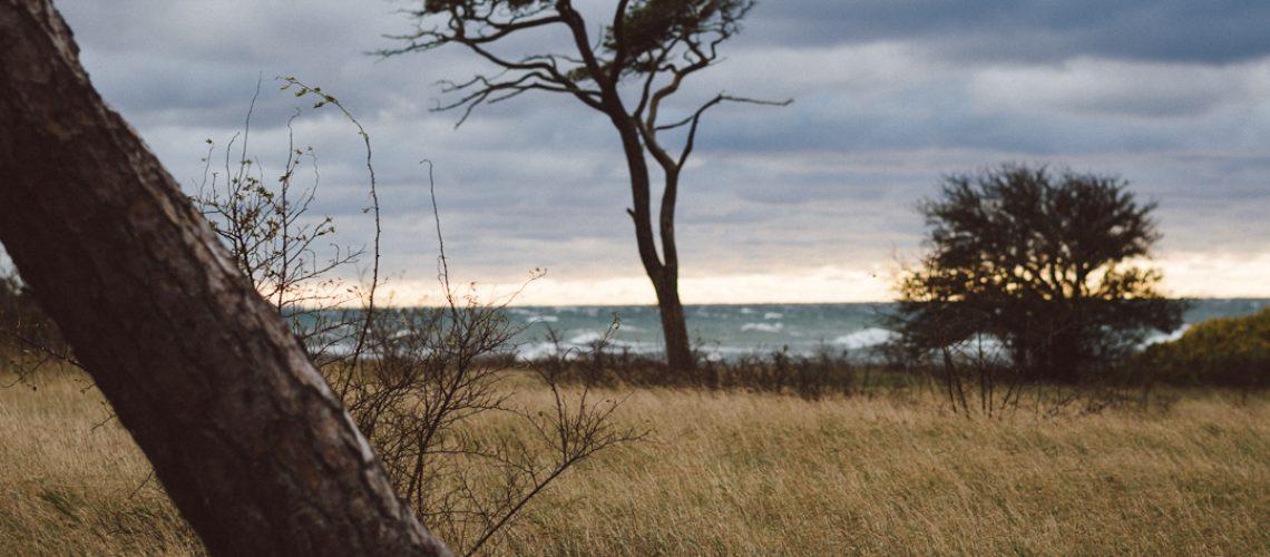 Gotland by Babes in Boyland