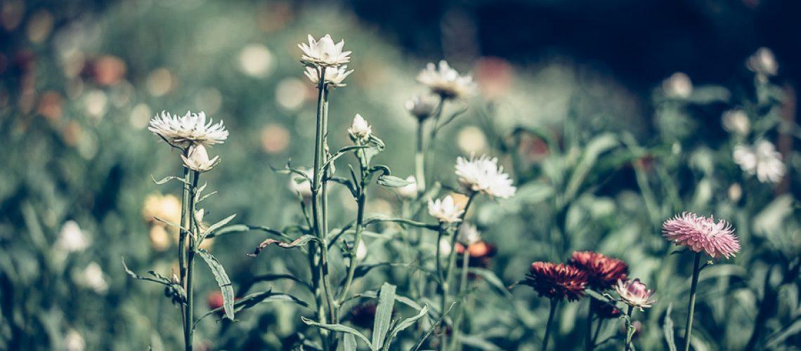 Katrin_Baath_Lovelylife_-08828