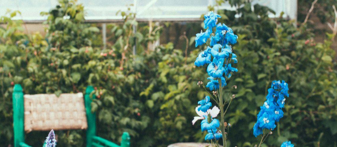 garden house_krickelin-3896