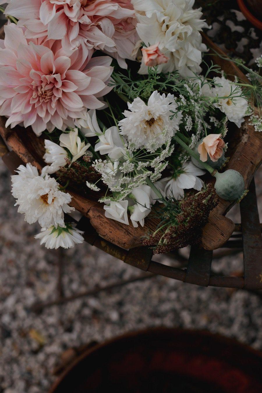 garden_flowers01