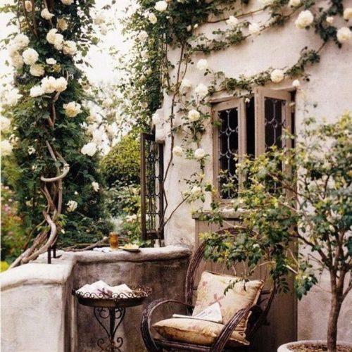 Lite trädgårds-dagdrömmar