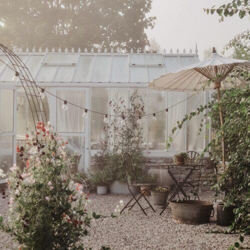 En sista prunkade trädgårdsbild för hösten