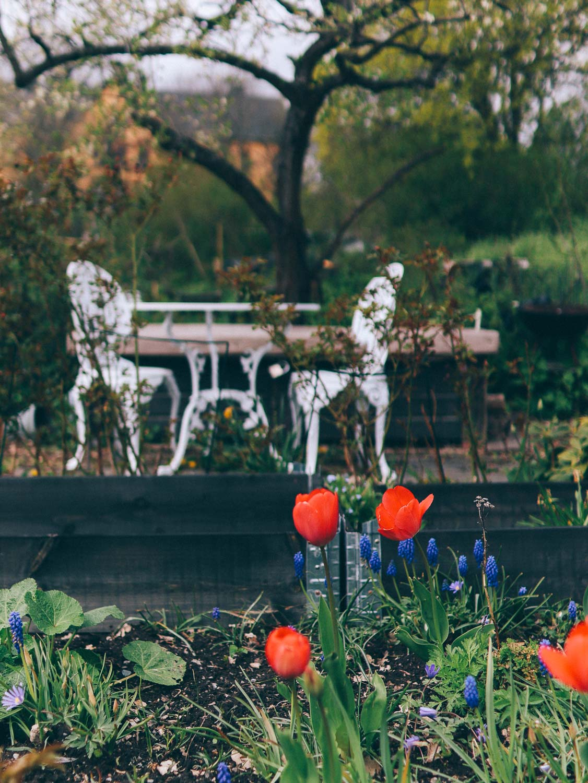 kolonilott stockholm volang blogg lovely life-6