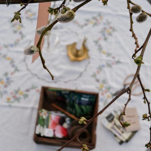 En vårklädd ljuskrona i växthuset