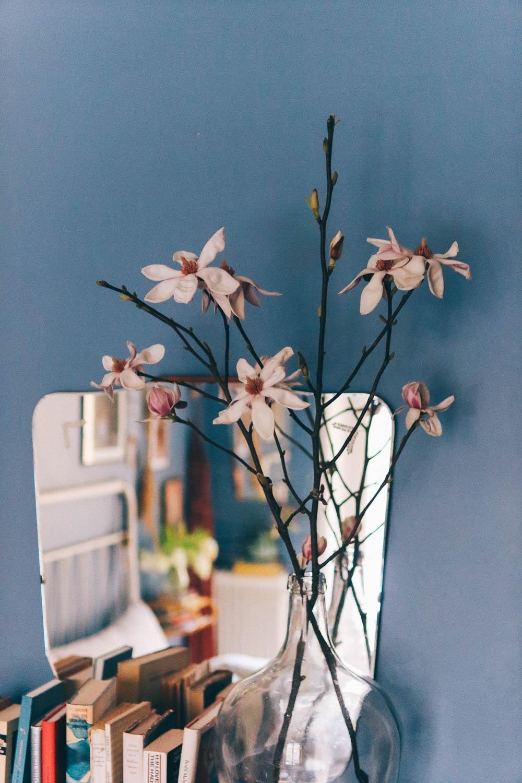 magnoliakvistar_