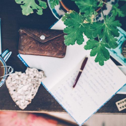Krysantemum, kontorstid och rå mat