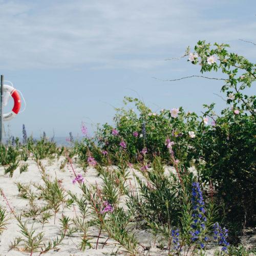 Smöjen, strand och kalkbrott