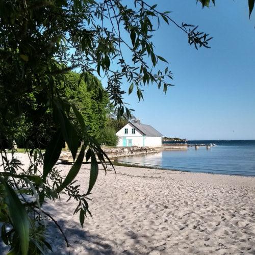 Stranddagar och första skörden