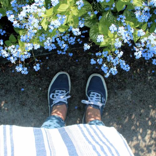 Bland blommor och ränder