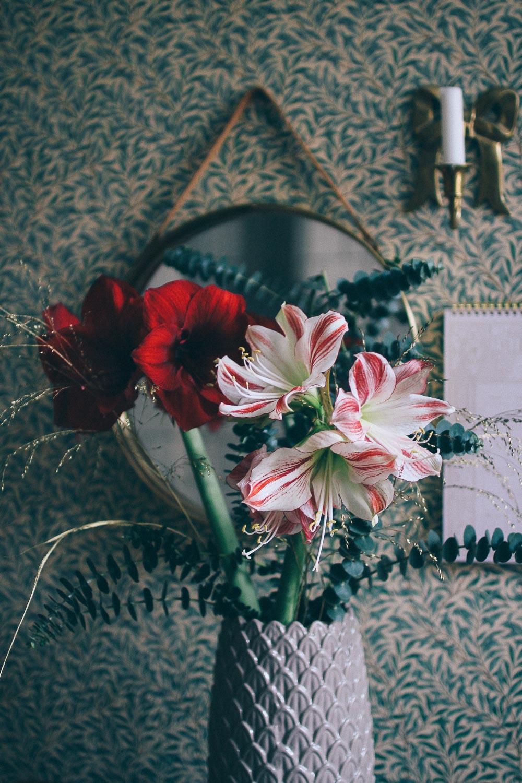 volang lovely life julen 2018-5