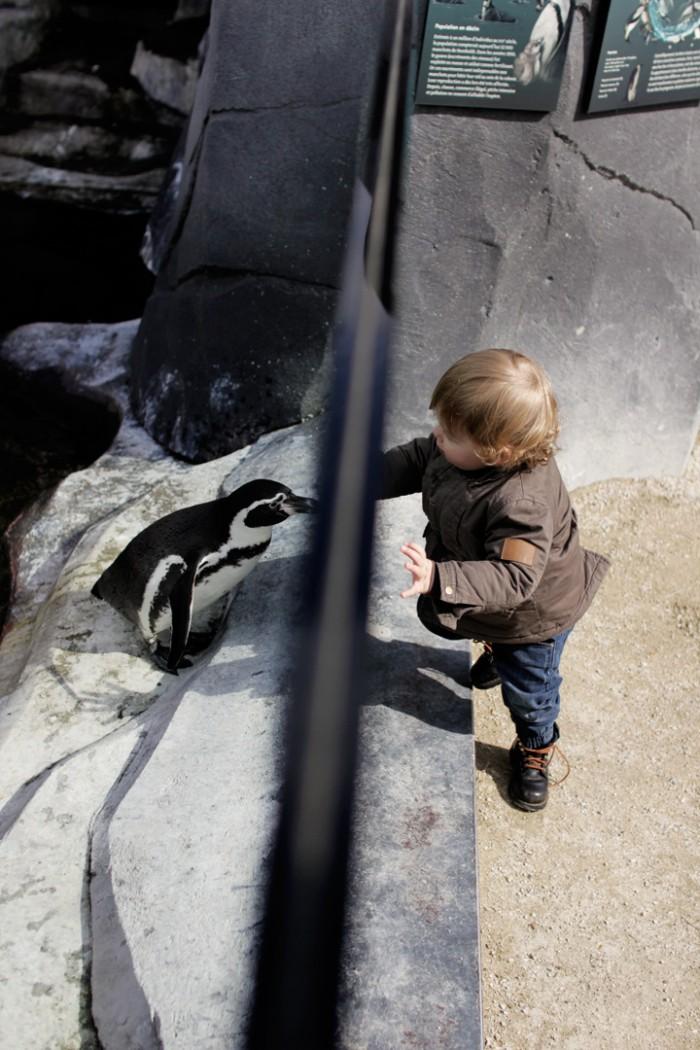 zoo paris
