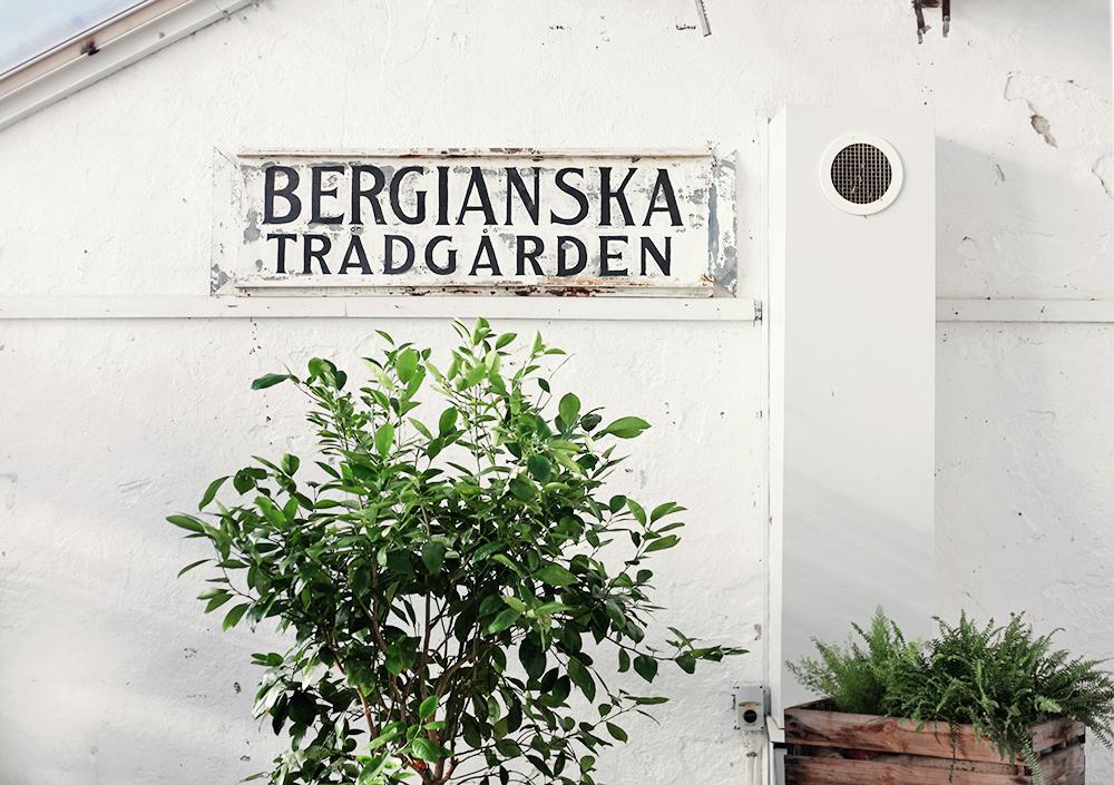 bergianska tradgarden
