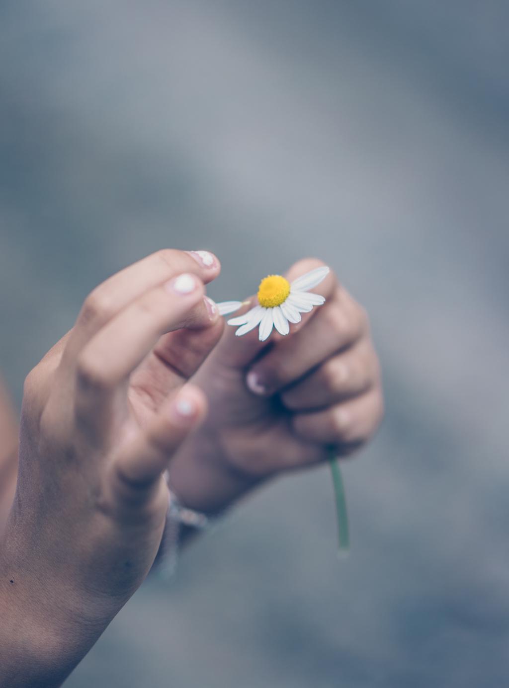 Lovely Life-09547